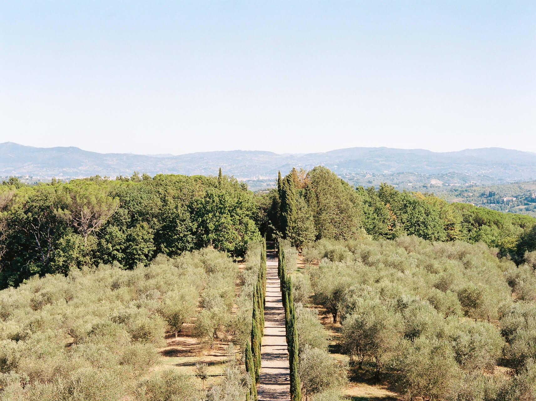 Gardens at Villa Mangiacane Florence